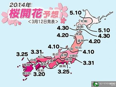 2014 Japan cherry blossom front map