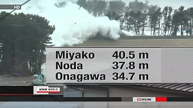March 11th tsunami a record 40-meters high