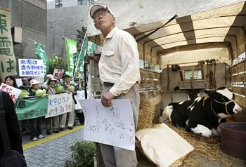Farmer with cow protests in front of TEPCO's Tokyo headquarters
