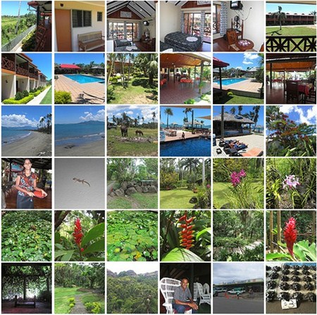 Fiji photo collage