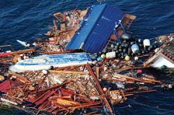 Floating debris from Japan tsunami