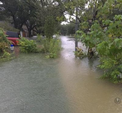 Flooded front yard