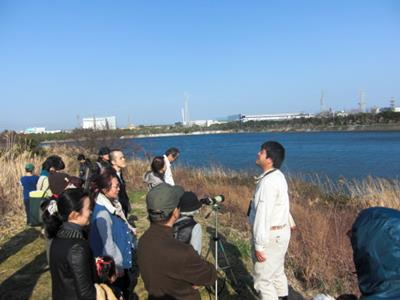 Sun. afternoon tour of Gyotoku Bird Observatory