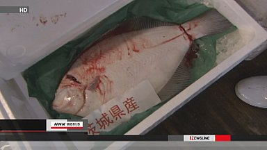 Ibaraki fish trade at normal prices