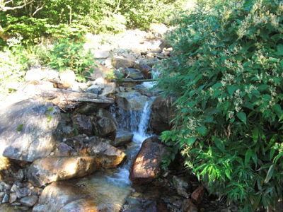 Ichinosawa mountain stream