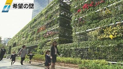 Kibo no Kabe (希望の壁, wall of hope)