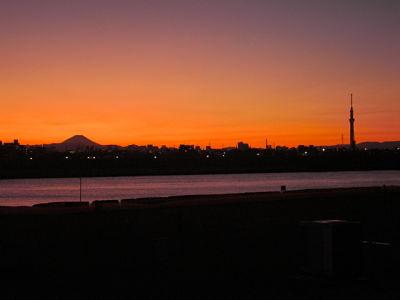 Mt. Fuji & Tokyo Sky Tree