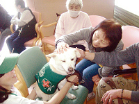Onagawacho therapy dog