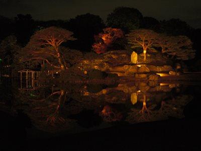 Rikugien 2014 nighttime lightup