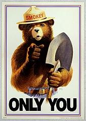 Smokey Bear - Only You