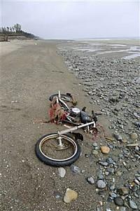 Japan tsunami Harley-Davidson