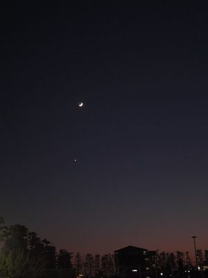brightest venus with 3-day crescent moon