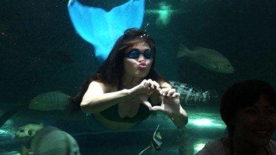 Boracay Crown Regency mermaid show