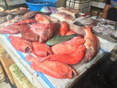Boracay D'Talipapa fish market fresh catch
