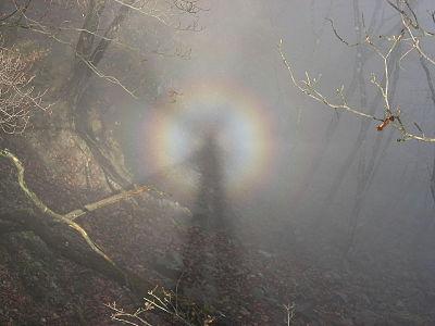 Brocken spectre in Tanzawa Mountains