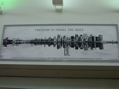 Freedom to Travel the Skies