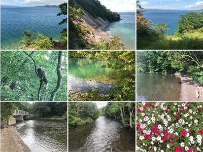 Hokkaido pic collage