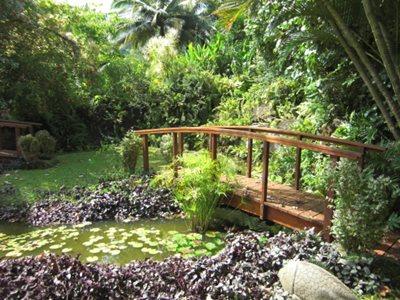 Rarotonga Maire Nui Gardens