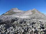 Mt. Kasagatake