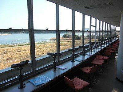 Gyotoku Bird Observatory building telescopes