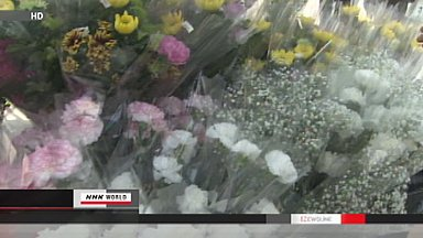 White carnations laid in tsunami-hit Iwate towns on Mother's Day