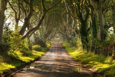 Northern ireland a country of great beauty no doubt that northern ireland is a country of amazing and spectacular beauty its many landscapes and towns full of color make this small island one of the sciox Images