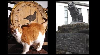 "(Left) Whisky cat in Scotland <br>(Right) Statue of the cat ""Towser"" who caught 28,899 mice between 1963-1987, a Guinness World Record"