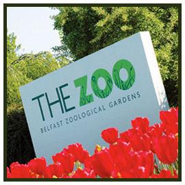 The Belfast Zoo