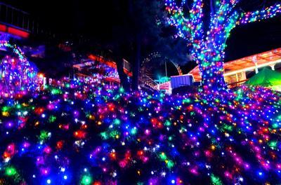 Japanese Christmas (in Yomiuri Land)