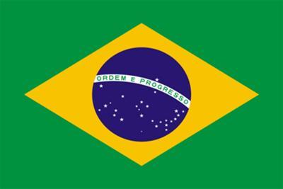 The national flag of Brazil
